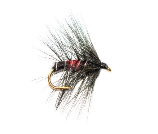 Bibio Wet Fishing Flies