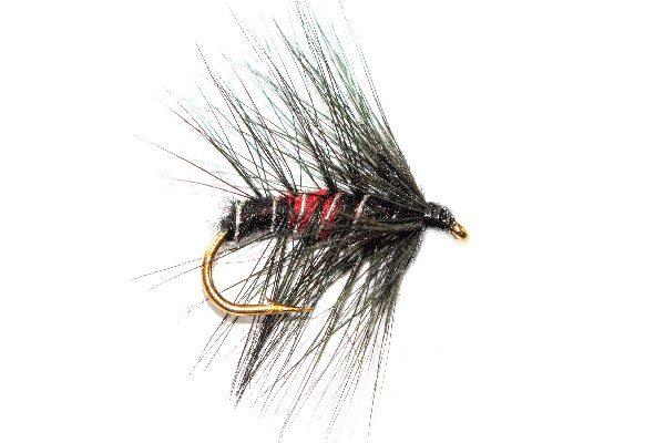 Bibio Wet Fishing Flies