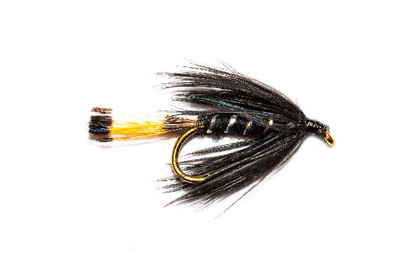 fish fishing flies brand, Black Pennell Wet Fly