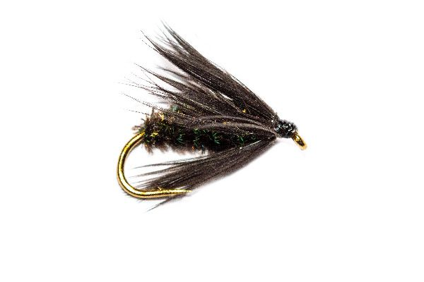 Wet Flies Sold Online Black and Peacock Wet Fly