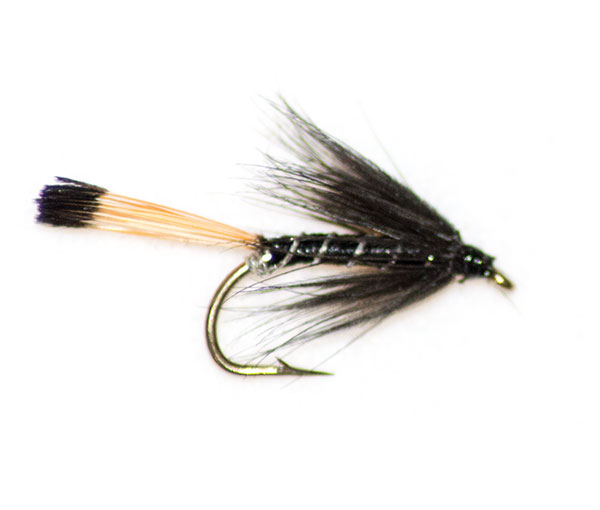 Black pennel traditional wet fly trout fishing flies at for Wet fly fishing