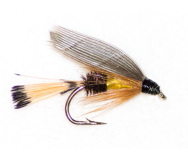 California coachman traditional wet fly from fish fishing for Wet fly fishing