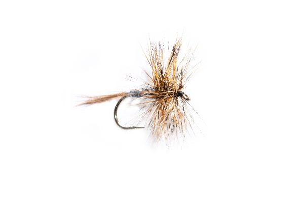 Adams Dry Fly, Fly Shop Fishing Flies