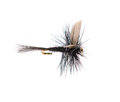 fly fishing shop online, Black Gnat Winged Dry Fly