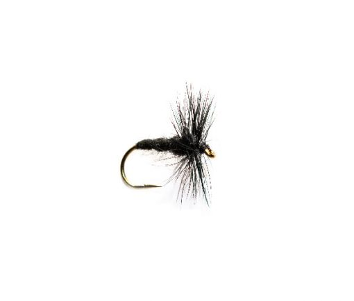 Black Spider Hackle Trout Fishing Fly