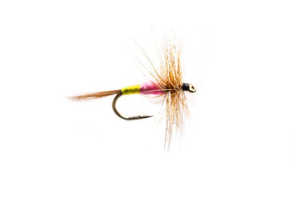 Fish Fishing Flies, Tups Indespensible Dry Fly
