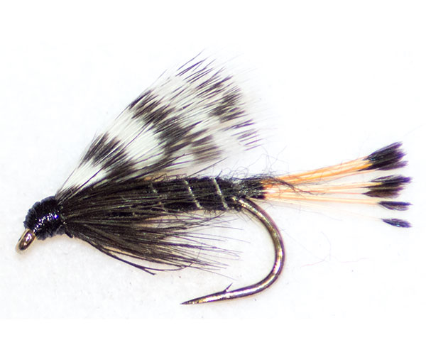 Teal Black Traditional Wet Fly From The Guys At Fish