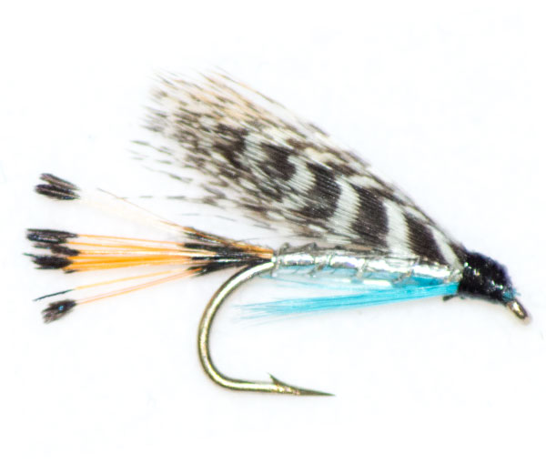 Teal blue silver traditional wet fly from the guys at for Teal fishing pole