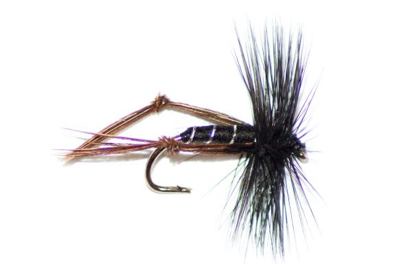 black hackled hopper type fishing flies