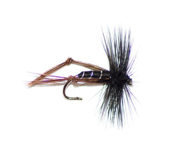 black hackled hopper type fishing flies