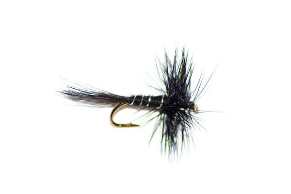 fishing flies dry fly type williams favourite