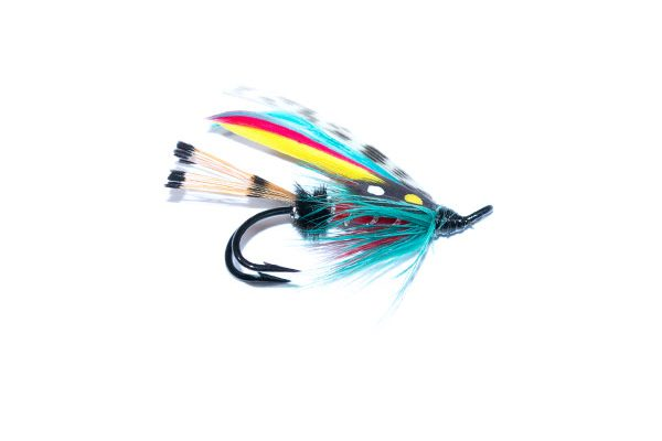 fishing flies for salmon and sea trout