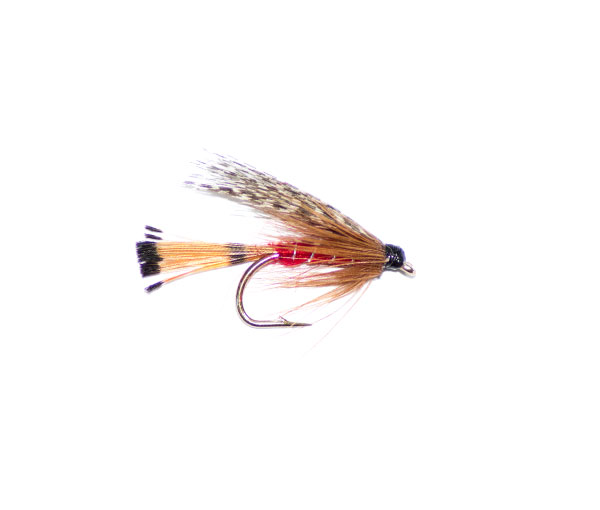 Teal Red Traditional Wet Fly Pattern From Guys At Fish