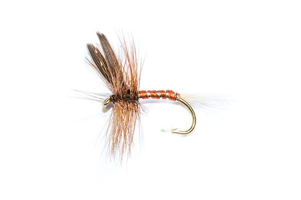 fishing flies brown spinner dry fly winged
