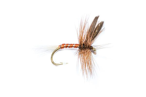 fishing flies brown spinner with brown body
