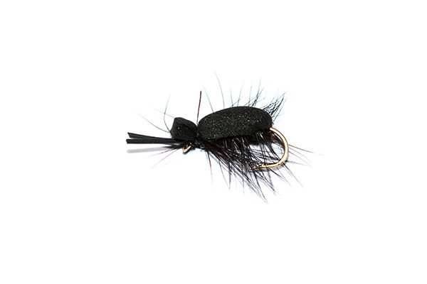 Foam beetle Black Hackle Killer