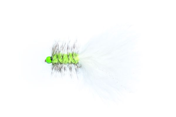 Grizzly White Hothead Tadpole