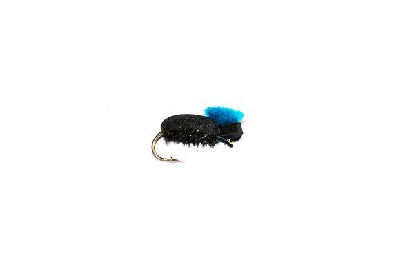 Target Foam Beetle Blue