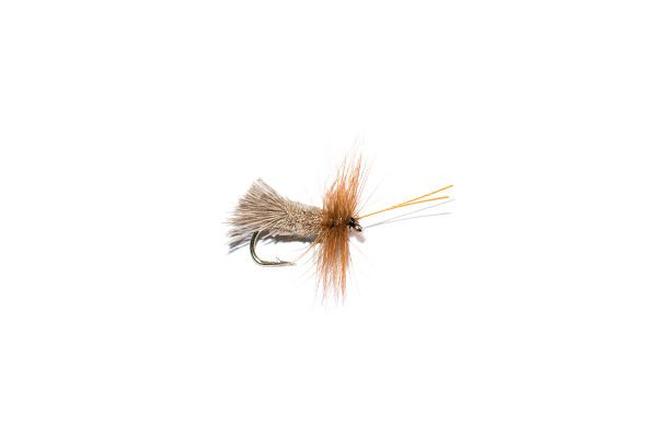 Goddard Caddis Green Belly Sedge