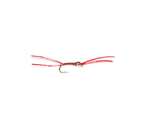 Fishing Fishing Flies Trout Fly Range Red Holographic Gold Head Blood Worm