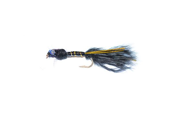 Fish fishing flies epoxy damsel type fishing fly. Black and Gold Epoxy Flash Damsel Nymph