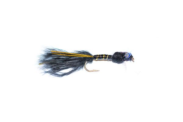 fish fishing flies Black and Gold Epoxy Flash Damsel Nymph