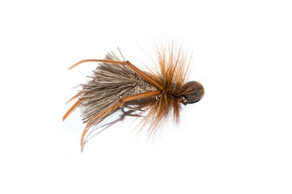 Fish Fishing Flies Deer Hair Sedge Caddis Brown Hackle Booby Hopper