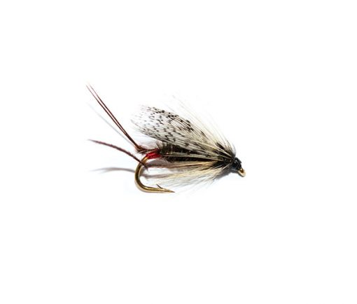 Fish Fishing Flies Despair Nymph Red Butt Soft Hackle
