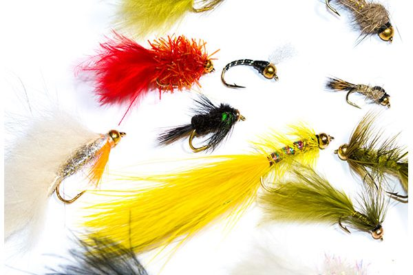 Fish Fishing Flies Goldhead Mixed Fly Pack