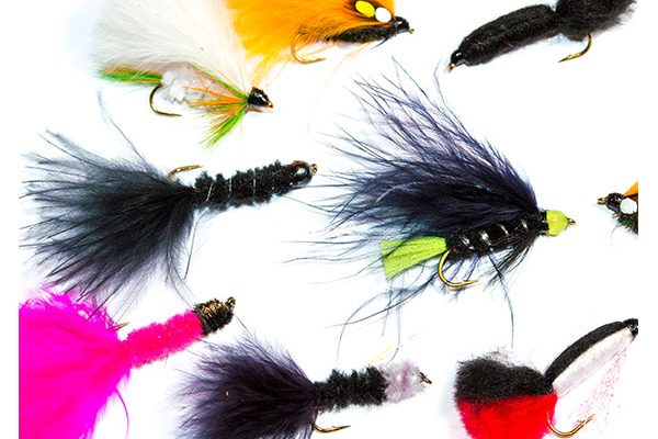 Fish Fishing Flies Lures Mixed Fly Pack