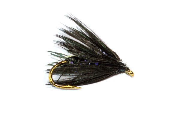 Fish Fishing Flies Straggle Fritz Black Spider Wet