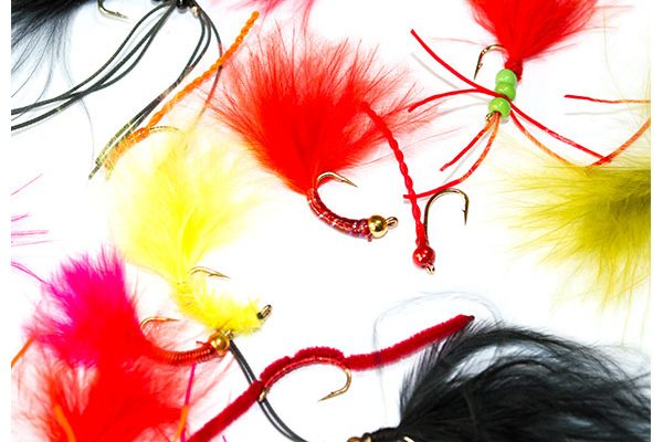 Fish Fishing Flies Bloodworm Fly Mixed Pack