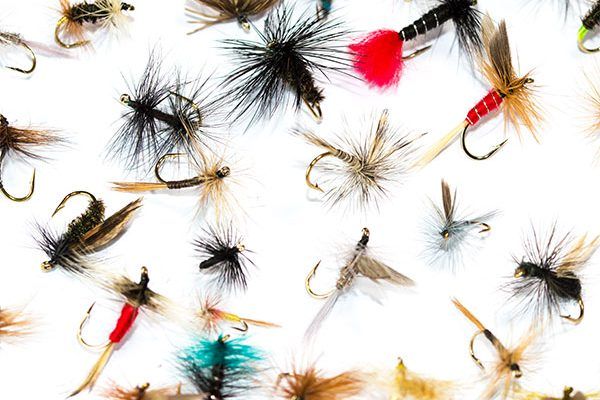 Fish Fishing Flies Dry Fly Mixed Pack