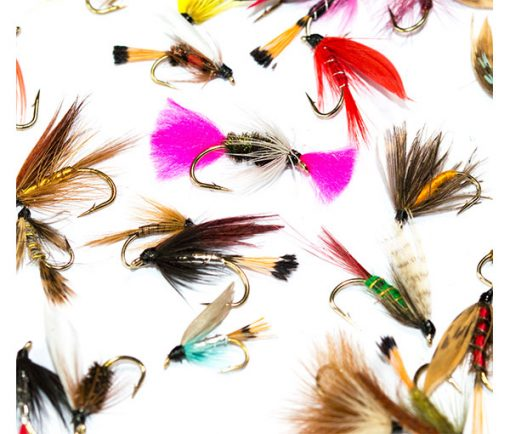 Wet Fly Mixed Pack