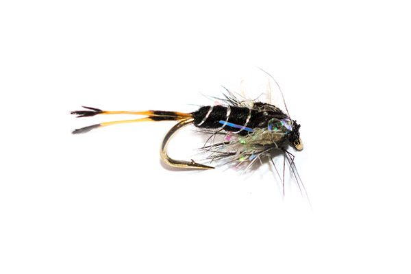 Trout Fishing Fly the Black Pennal Pearly Thorax Nymph