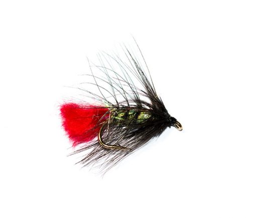 Fish Fishing Flies Brand Quality, UV Pearly Body Black Zulu