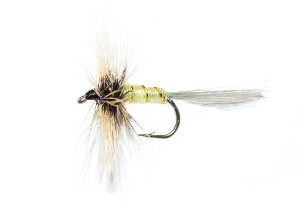 Grey Hen Greenwells dry fly from fish fishing flies