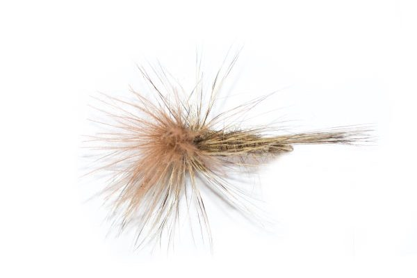 Natural Parachute Rust CDC from Fish fishing flies team