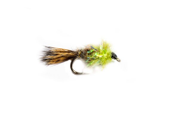 Frit zhares ear lime