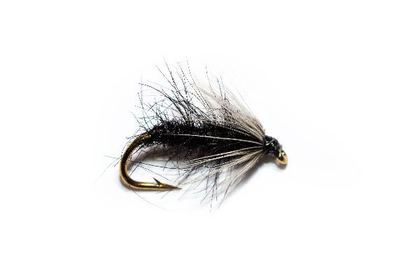 Daylight Mito Fly