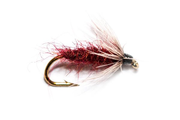 Nightime Mito Fly, trout fishing flies available to buy online