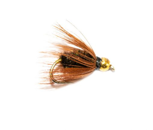 The Online Fly Shop at Fish Fishing Flies, Coachman Wet Fly Goldhead