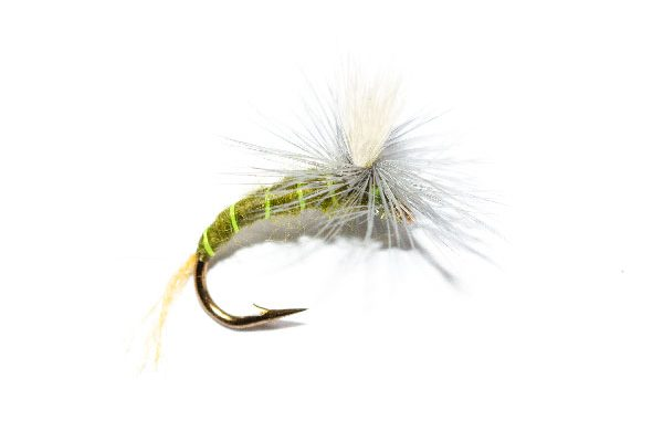 Fish Fishing Flies online, Goddard Olive Emerger