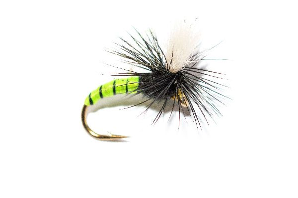 Grannom Pupa Parachute Trout Fly