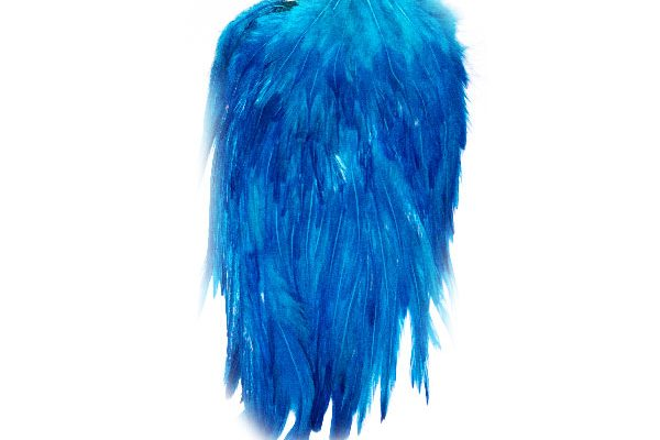 superb value for money fly tying capes, Large Blue Cock Capes