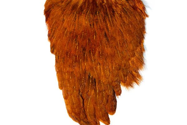 Large Ginger Hen Cape