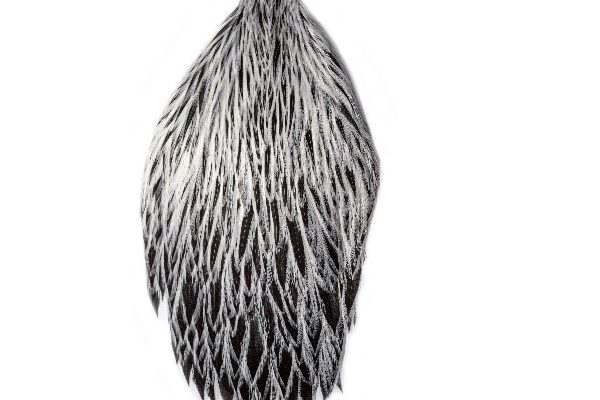 Silver Badger Cock Cape