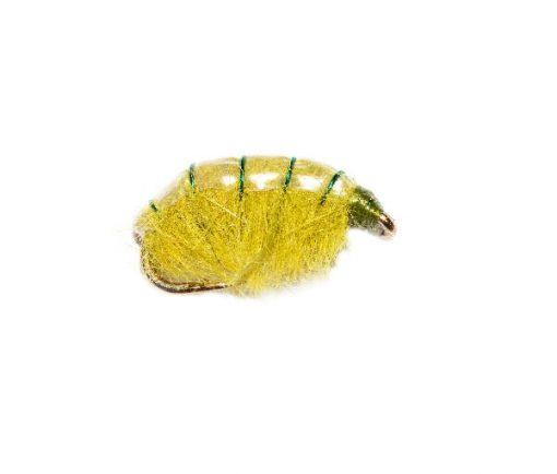 Weighted Olive Shrimper