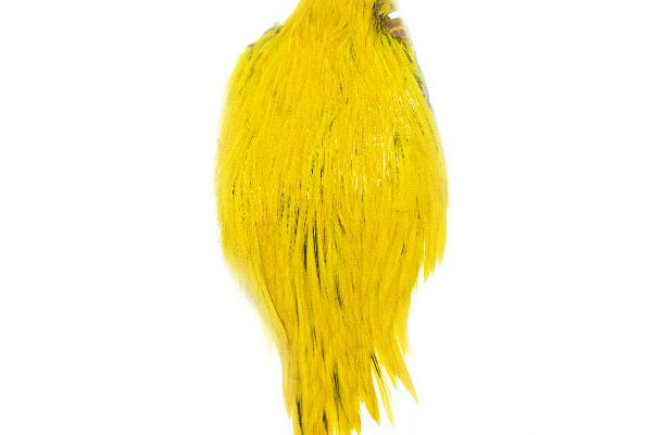 Yellow Cock Cape Waterburn Natural Feathers