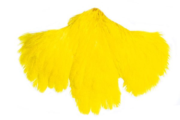 Yellow Hen Saddle Cape
